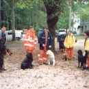 Tabor za spasilačke pse u Tolminu!