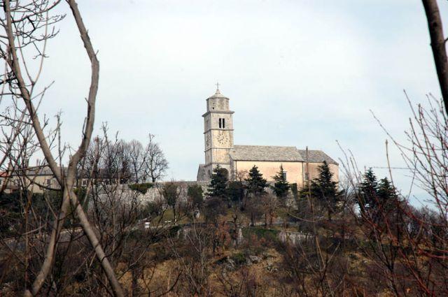 Volnik_27_02_2011 - foto