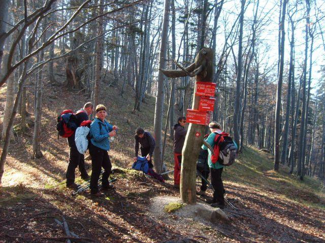 Srednji vrh pod Storžičem 13.11.2011 - foto