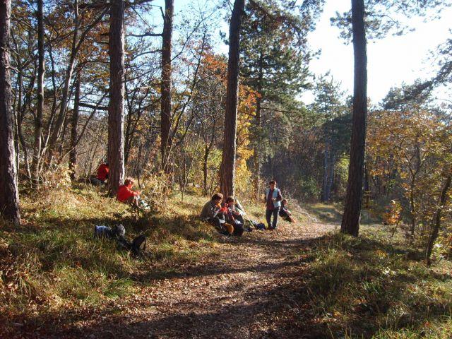Kras od Peska do Fernetičev 27.11.2011 - foto