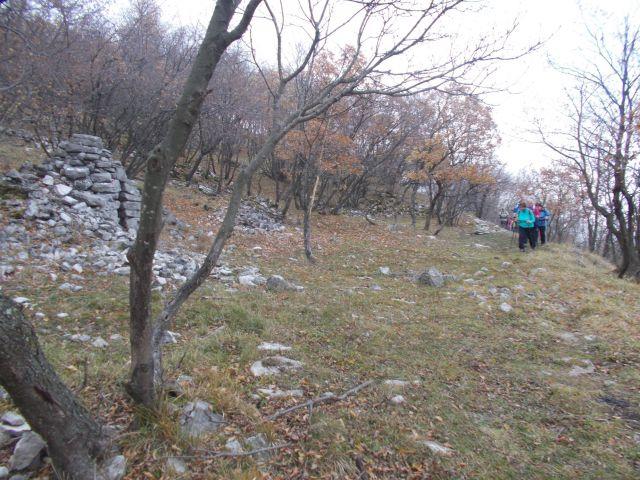 Sv. Ambrož, Trstelj, Lipa 13.12.2015 - foto