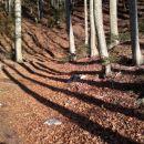 Zavijemo na staro graničarsko stezo pod Ljubeljščico.