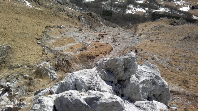 Nanos 24.02.2012 - foto