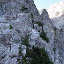 vstop v slovensko pot na Ledine