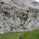 navpična stena Grive