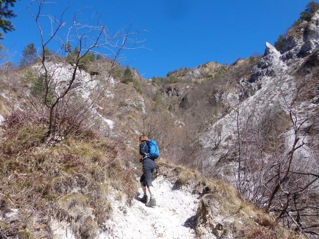 Korošaški slapovi, Kamniški vrh, 11.03.2017 - foto