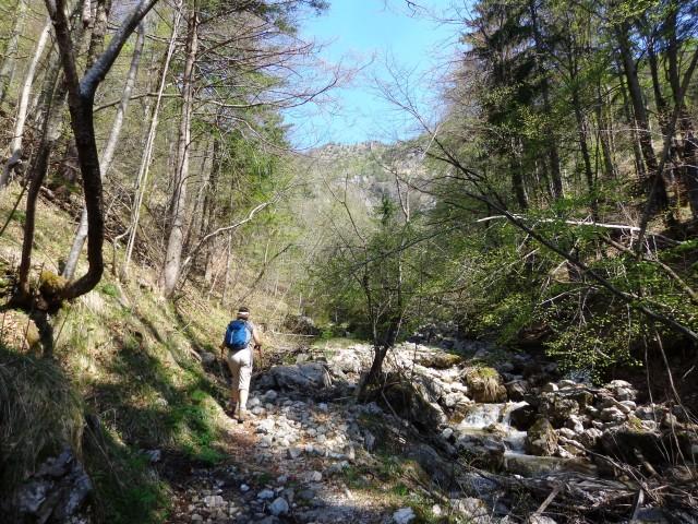 Korošaški slapovi, Pl. Osredek,  20.04.2018 - foto