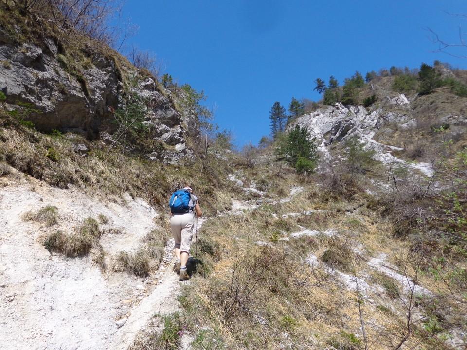 Korošaški slapovi, Pl. Osredek,  20.04.2018 - foto povečava