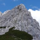 Zelenjak ali Nemški vrh ali Pautz, 22.06.2020