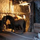 Tako so živeli konji v rudniku soli.