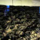 Človeške lase so uporabljali za izdelavo tkanin