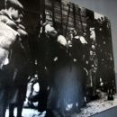 Prihod židov v Auscwitz 2, foto SS.