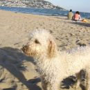 Uživanje na Azurni obali.
