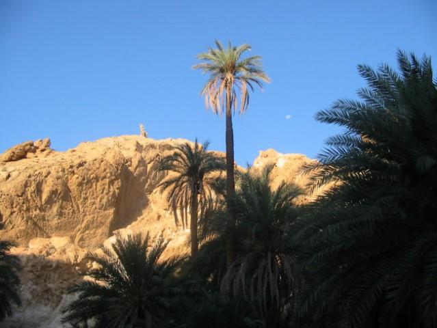// tunizija 2oo6. - foto