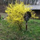 Celjska koča, Svetina, 17.03.2007