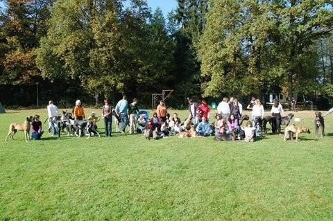 Piknik Domžale 2008 - foto
