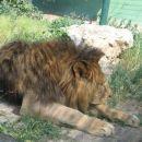 ZOO ZAGREB - 25.06.2005