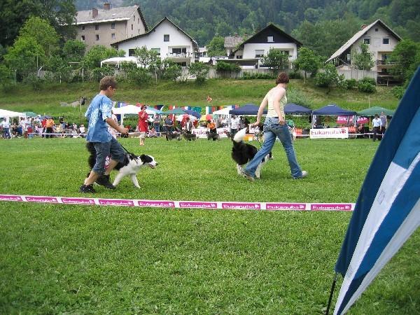 CAC HRUŠICA 2006 - foto povečava