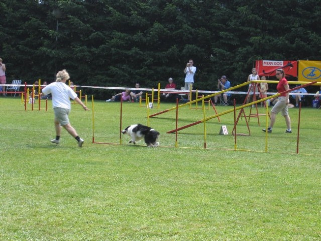 AGILITY DOMŽALE - 24.06.2006 - foto