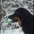 juhu, sneg!