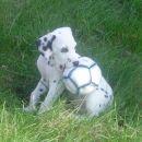 Ko bom velik, bom nogometaš!