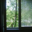 Pogled s postelje na odprto okno, zelenje, drevo, vsaj nekaj narave, če že slišim avte