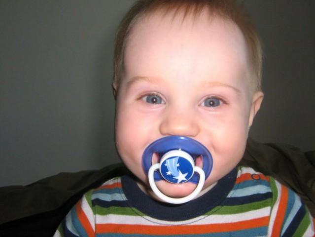 7 mesecev - foto