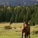 uskovnica mountain