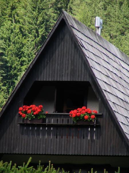 Slovenija - foto